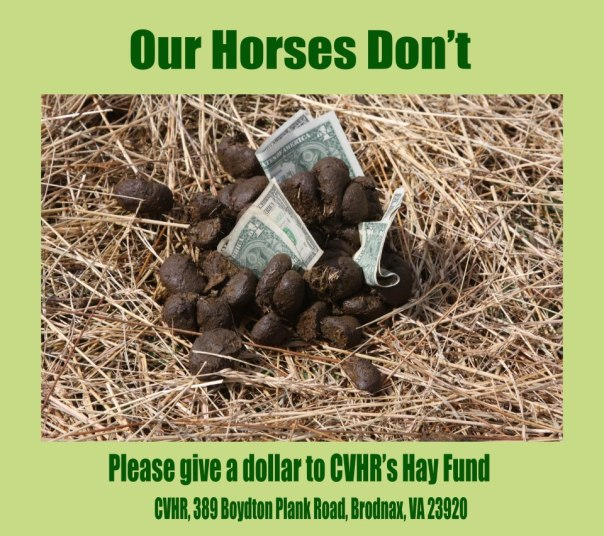 central virginia horse rescue dollar hay fundraiser