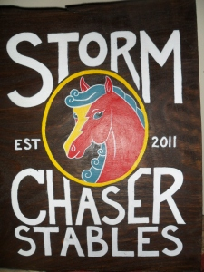 storm chaser stables genevieves custom web design